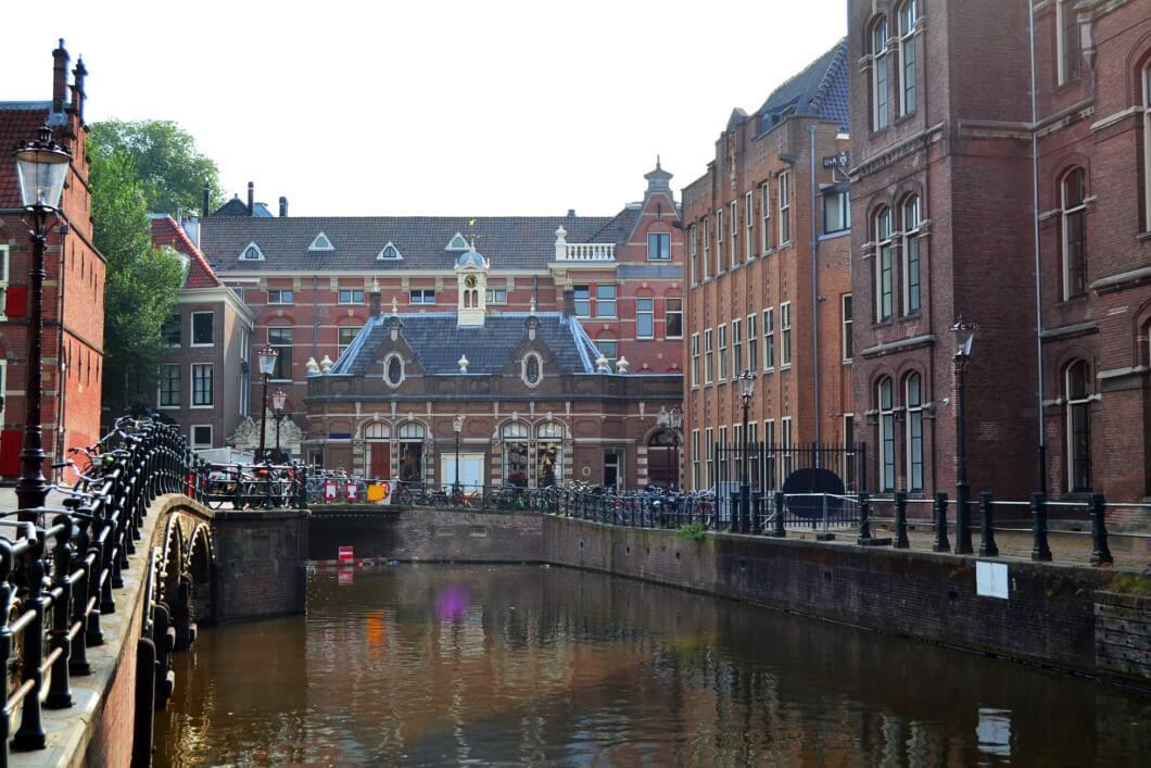 לימודי רפואה באירופה באוניברסיטת אמסטרדם