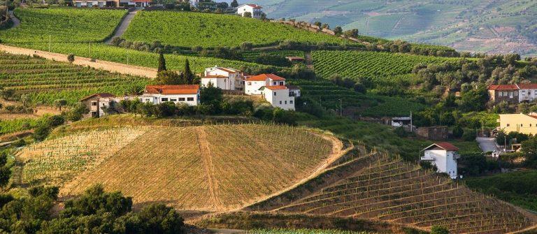 עמק דורה בצפון פורטוגל – לחיות ולעבוד קרוב לטבע